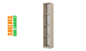 Side Wall Bed Unit With Shelves